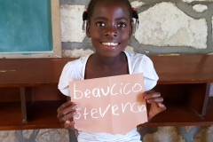 Beaucico Stevencia